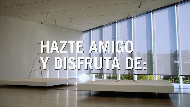 VIDEO HAZTE AMIGO DEL CENTRO BOTÍN