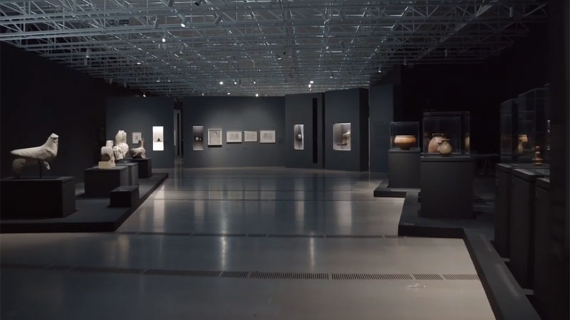 Exposición «PICASSO IBERO». Comentarios de Cécile Godefroy y Roberto Ontañón Peredo
